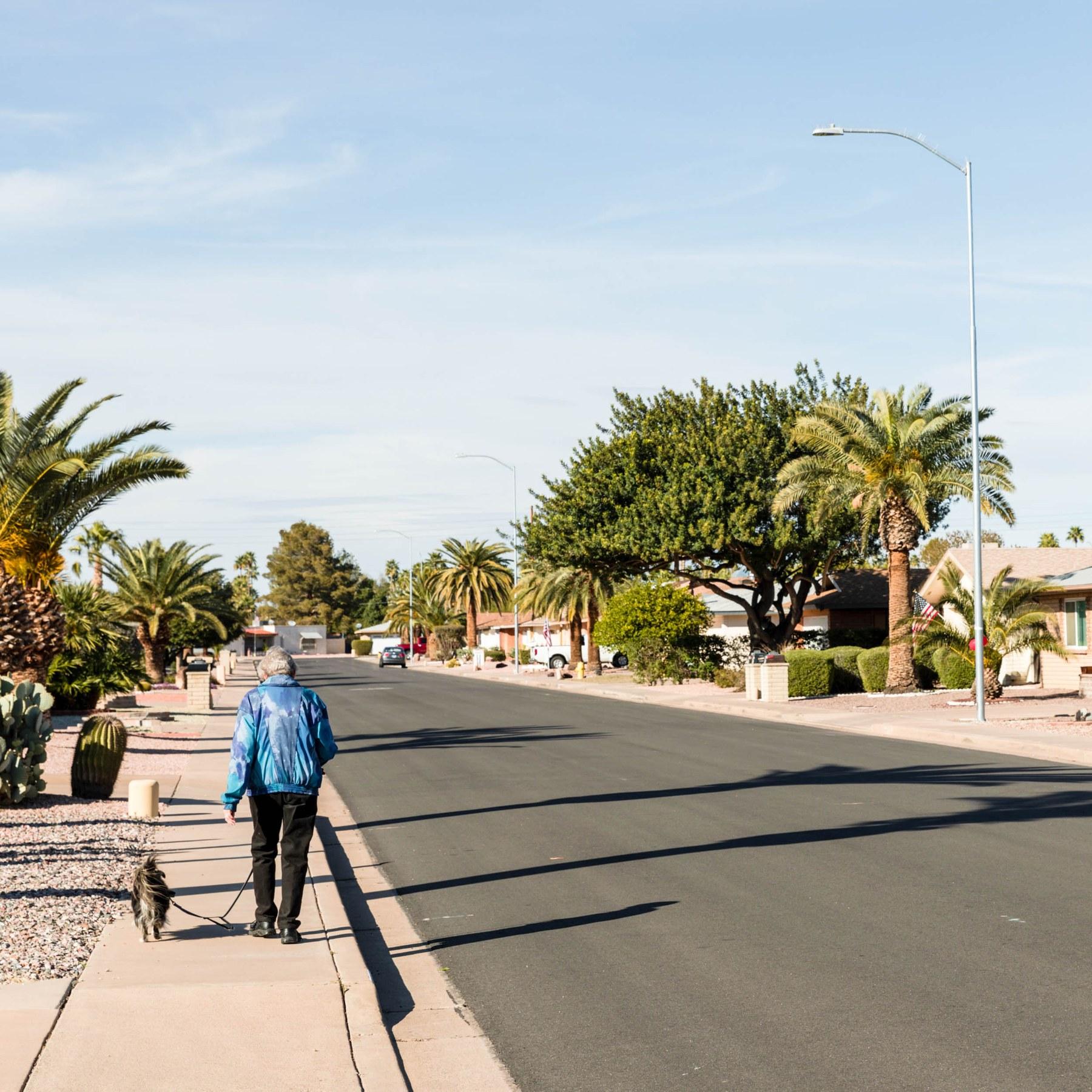 Mesa Village Apartments: Sunland Village, Mesa AZ - Neighborhood Guide