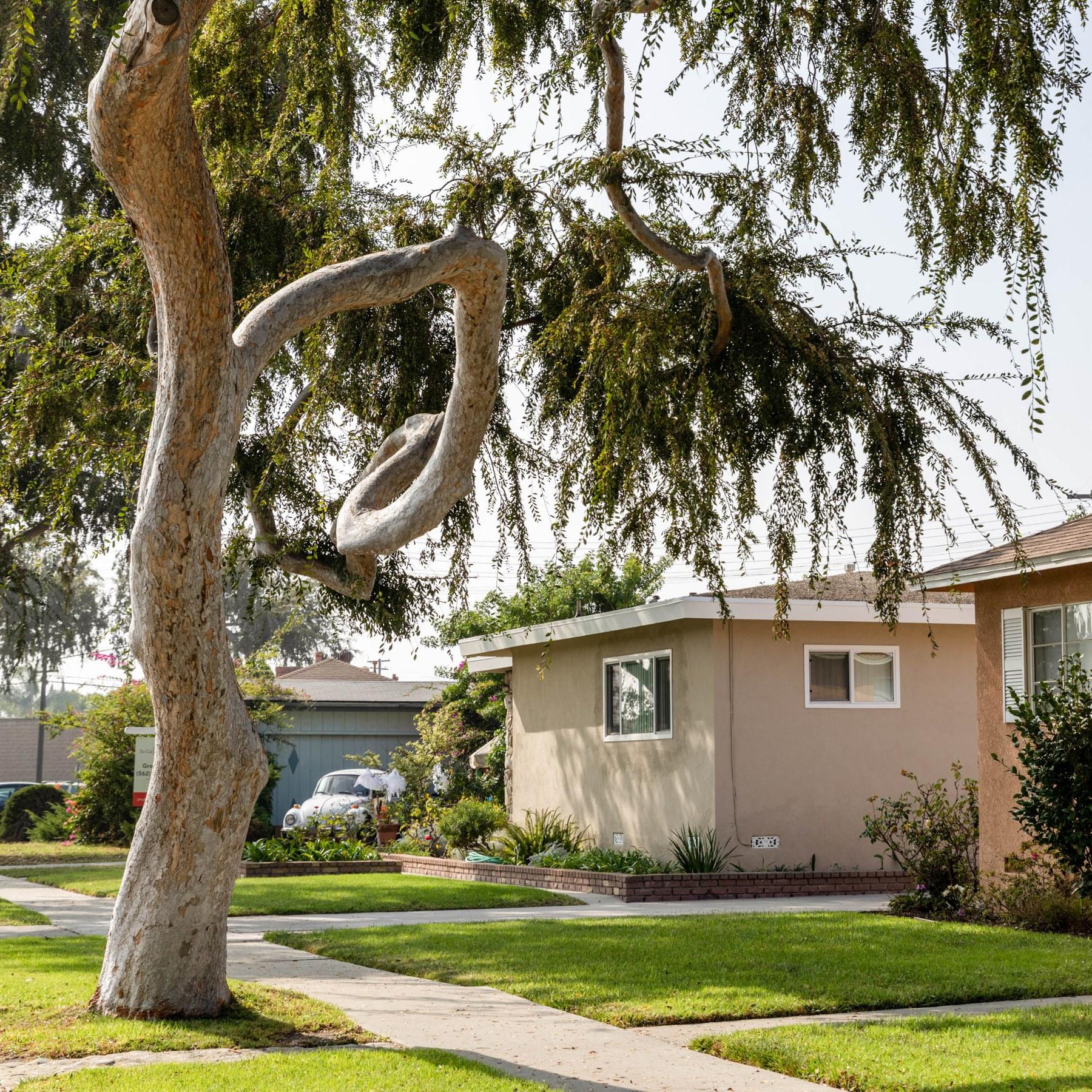 Los Altos, Long Beach CA - Neighborhood Guide