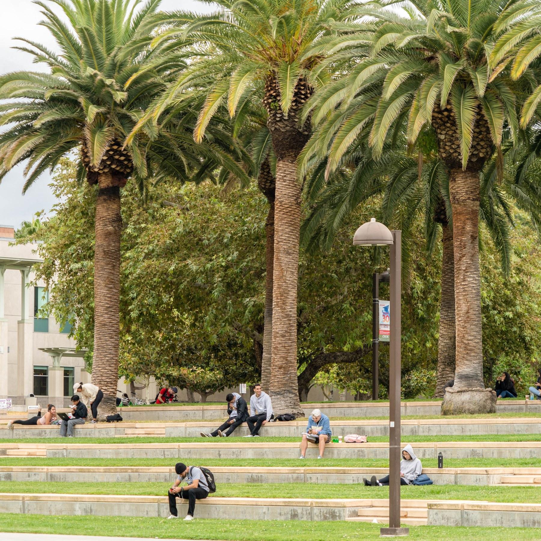 Local Com Homes For Rent: Northridge, Los Angeles CA - Neighborhood Guide