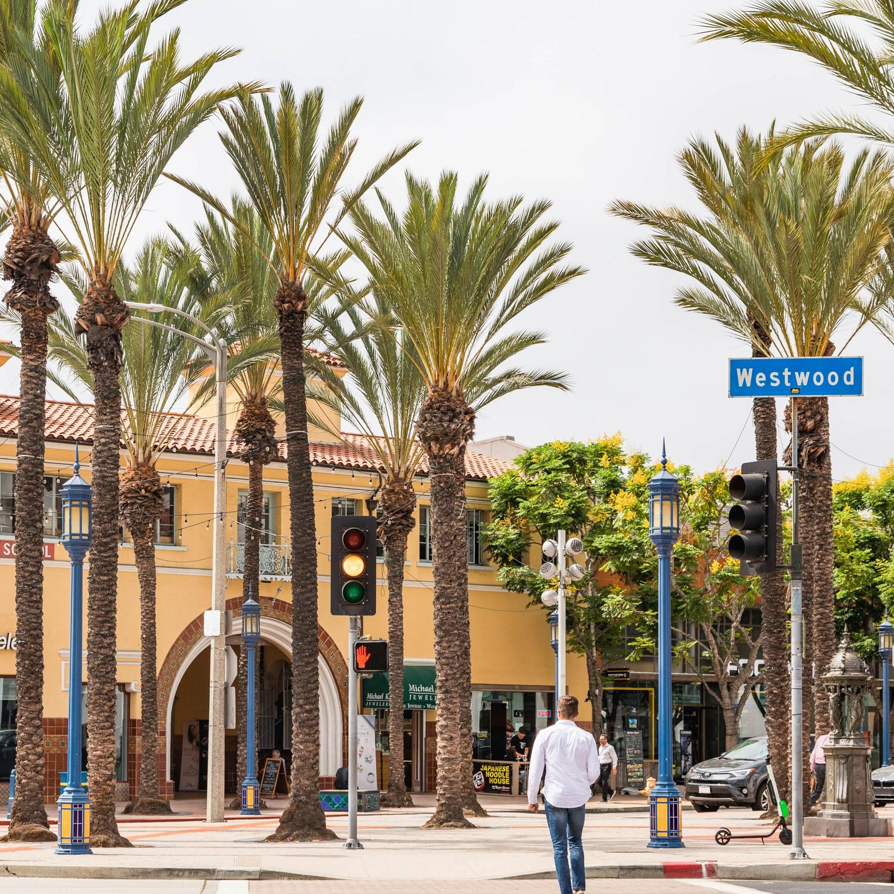Westwood Los Angeles CA Neighborhood Guide Trulia