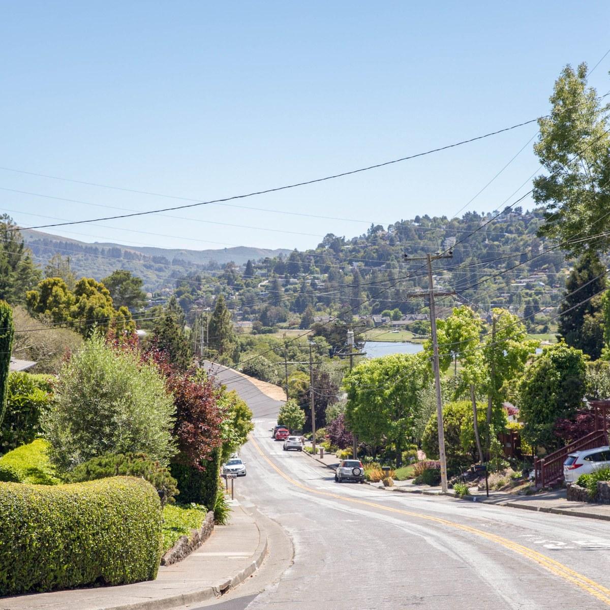 Vs Hunting Ridge Apartments: Bayfront/Enchanted Knolls/Shelter Ridge, Mill Valley CA