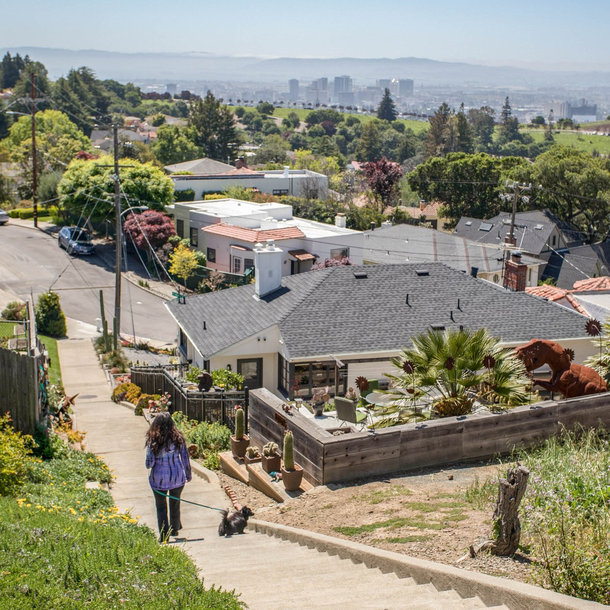 Local Com Homes For Rent: Upper Rockridge, Oakland CA - Neighborhood Guide