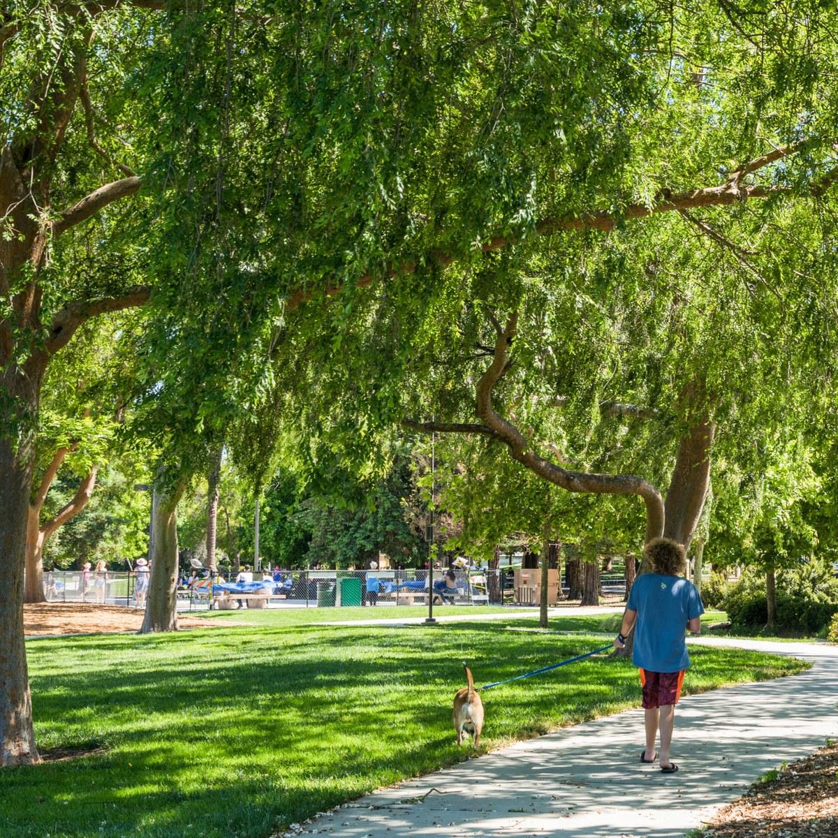 Gregory Gardens Pleasant Hill Ca Neighborhood Guide