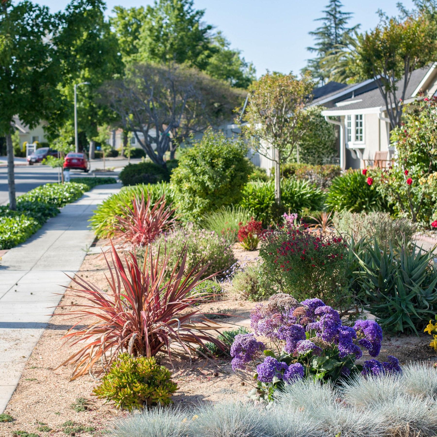 De Anza, Sunnyvale CA - Neighborhood Guide | Trulia
