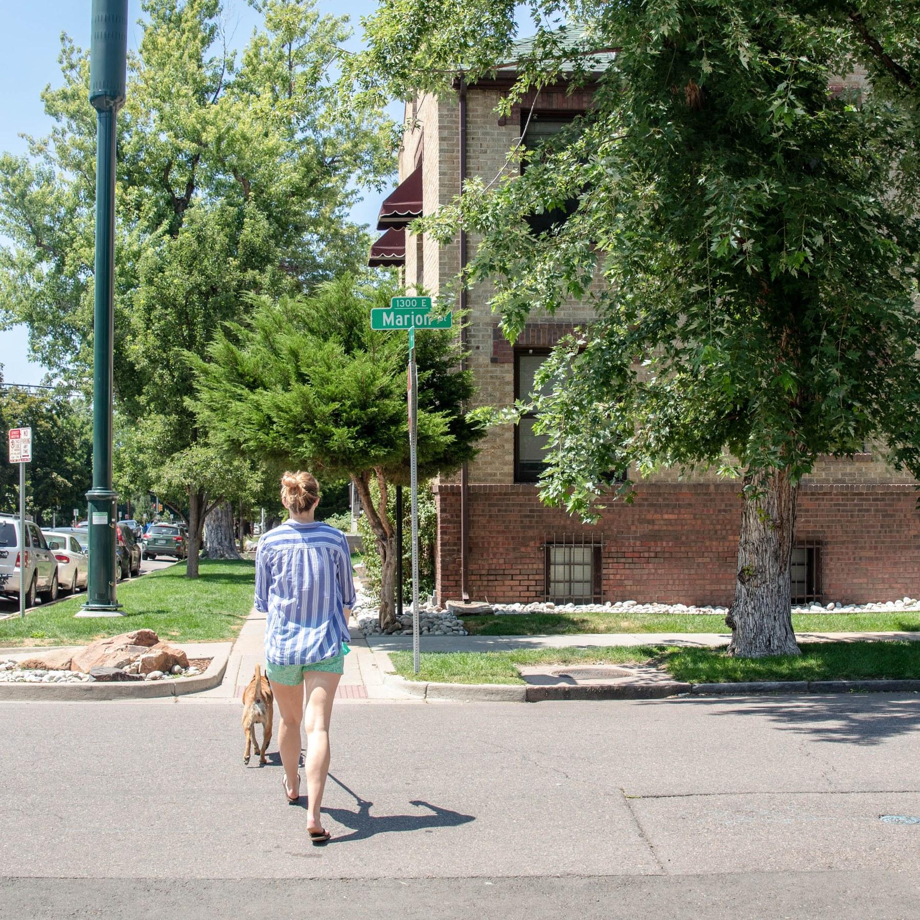 Cheesman Park, Denver CO - Neighborhood Guide