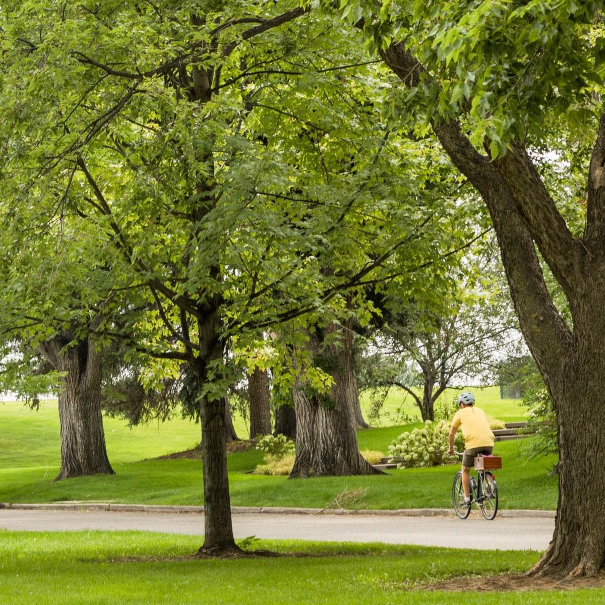 Hilltop Denver Co Neighborhood Guide Trulia
