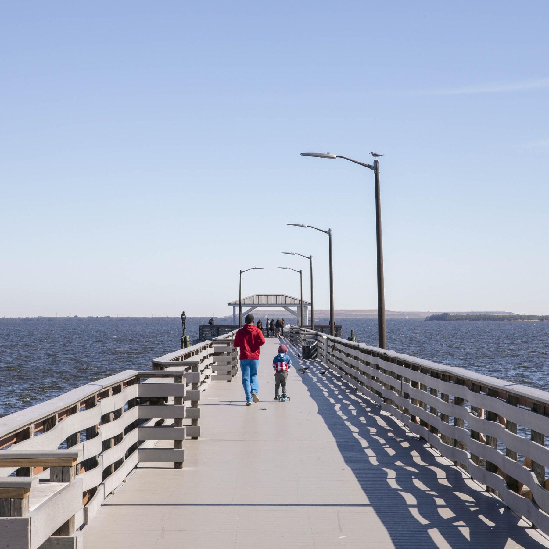 Ballast Point, Tampa FL - Neighborhood Guide