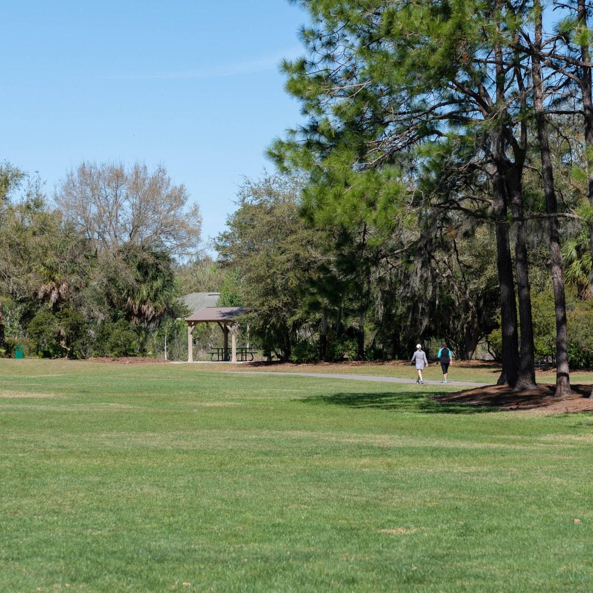 Hunters Green, Tampa FL - Neighborhood Guide