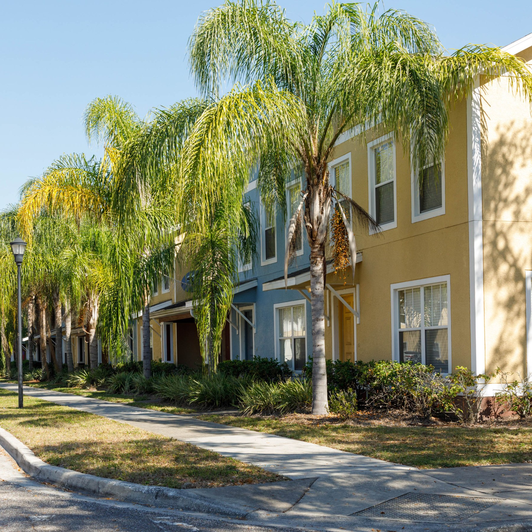 Tampa Fl Apartments For Rent In Old Seminole Heights: Seminole Heights, Tampa FL - Neighborhood Guide