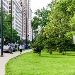 Apartments For Rent In Lincoln Park Chicago Il 427 Rentals Trulia