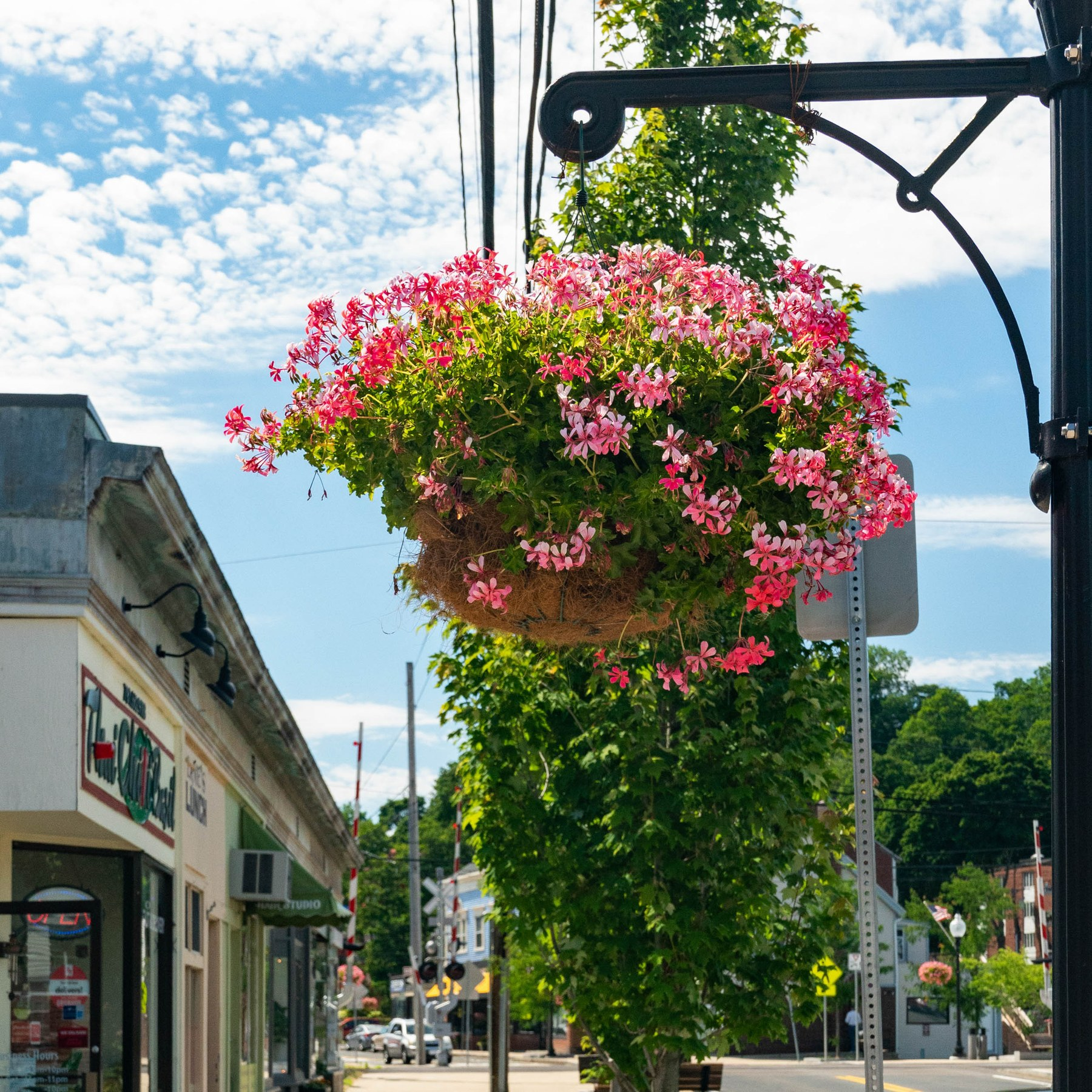 Local Com Homes For Rent: Melrose Highlands, Melrose MA - Neighborhood Guide